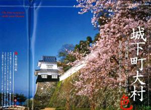Castle Town Omura